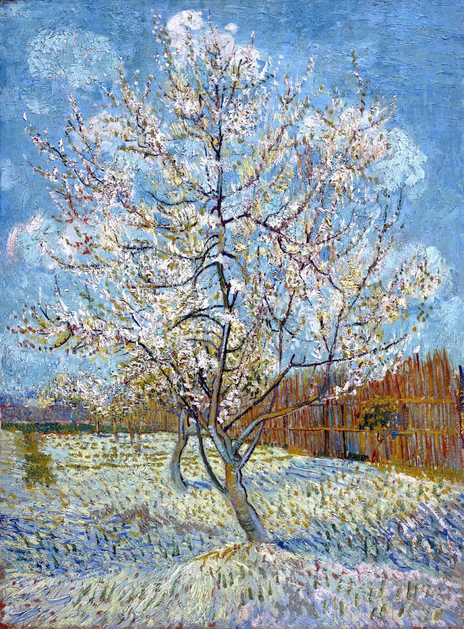 Персиковое дерево в цвету. Ван Гог