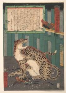 Дикий тигр. Каванабэ Кёсай.