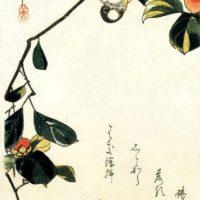 "Из серии ""звери и птицы"". Утагава Хиросигэ."