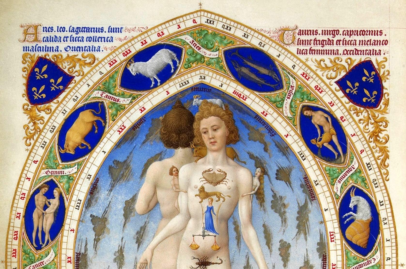 Анатомия человека, музей Конде. Фрагмент.